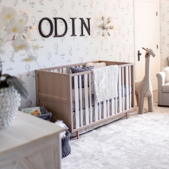 Odin Carter Nursery