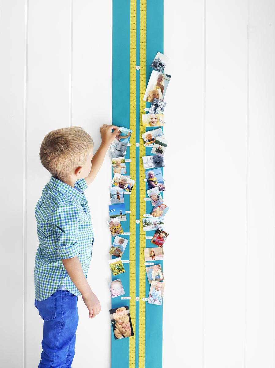 Photo-Gallery Growth Chart