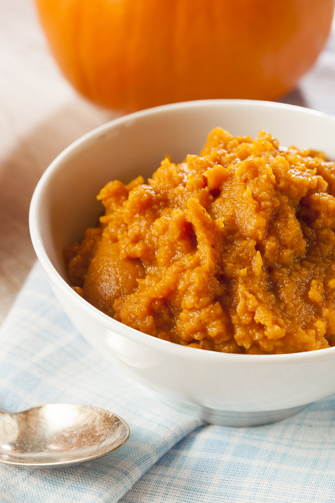 Pumpkin puree in white bowl