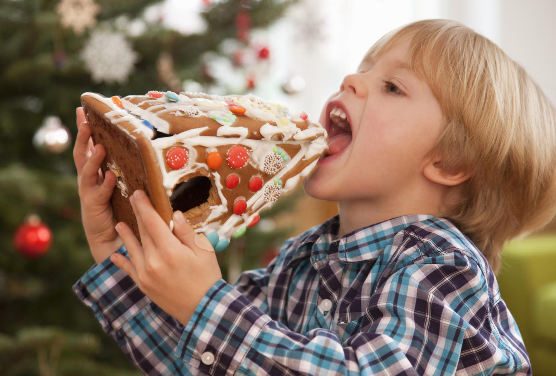 Boy eating entire gingerbread house