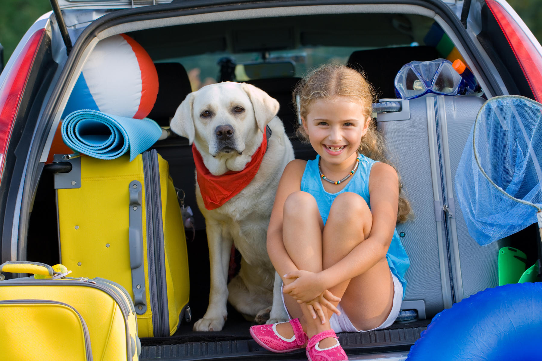 Puppy on Board: 5 Tips for Traveling With Your Dog