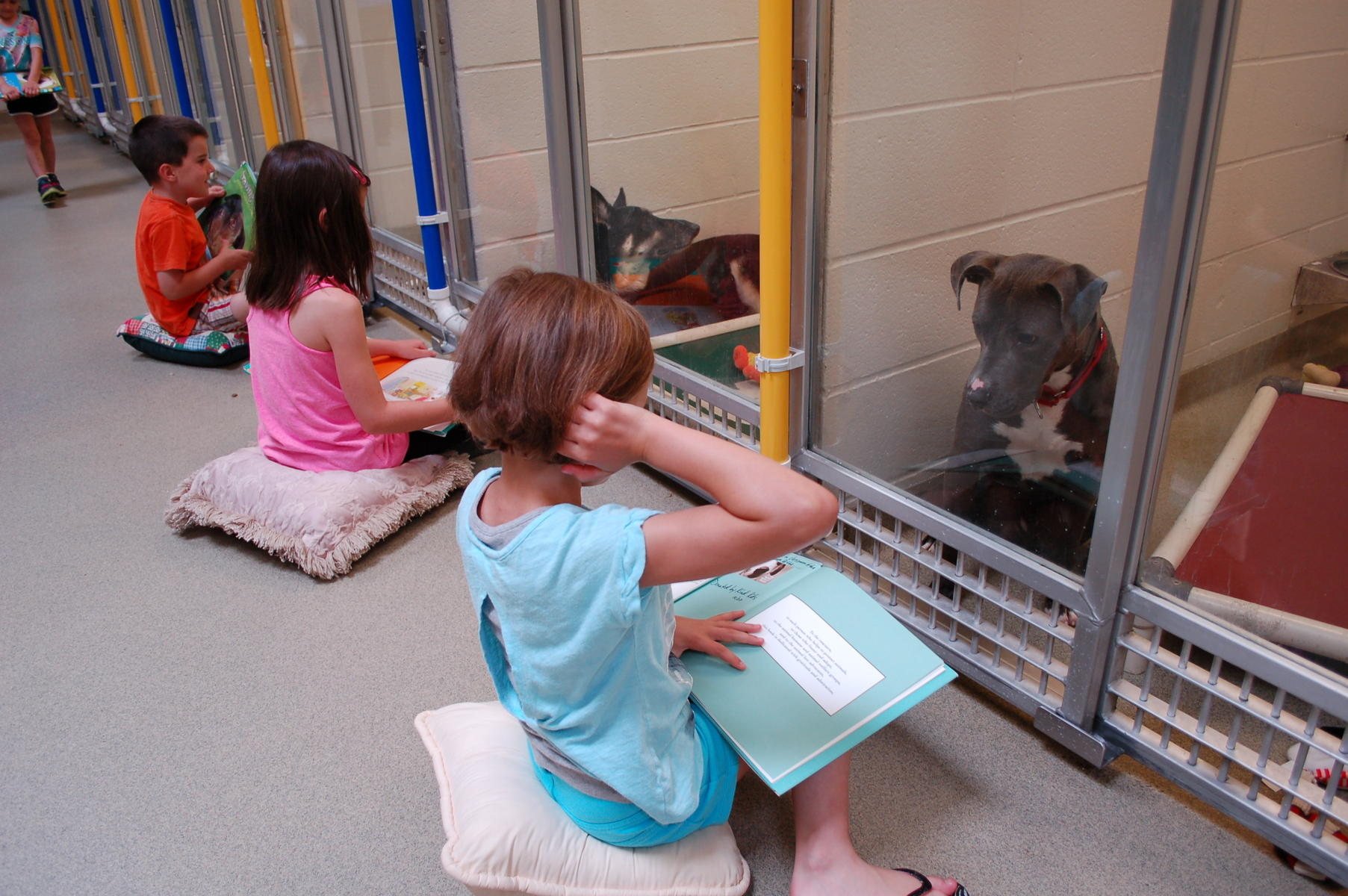 These Kids Are Reading to Shelter Dogs for a Really Beautiful Reason