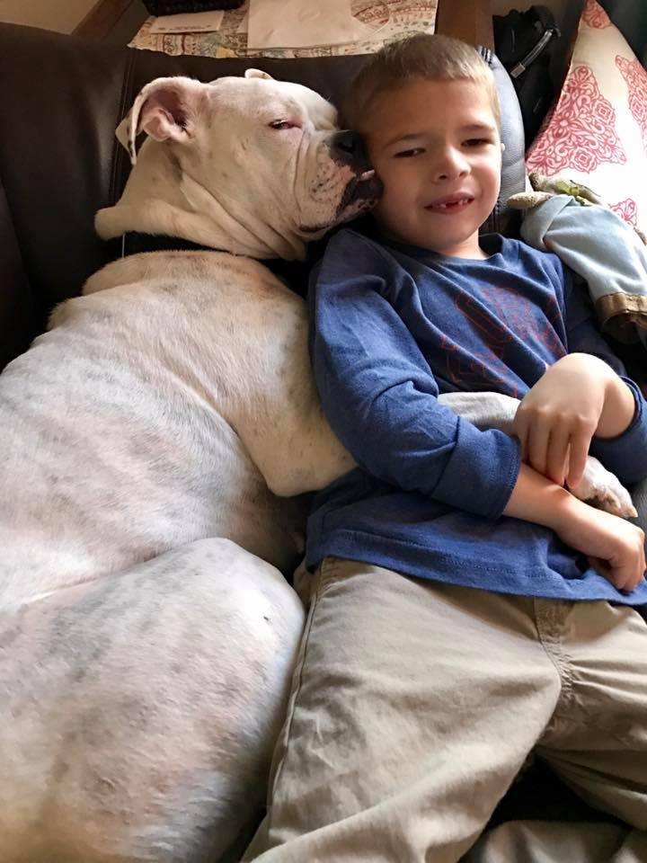 You Have to See the Sweet Bond Between This Boy With Autism and His Deaf Dog