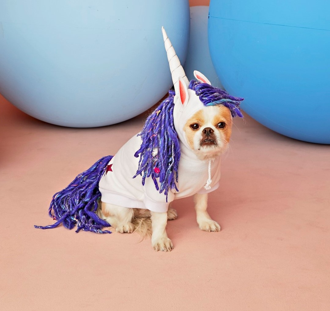DIY Kid Costumes Unicorn Emoji For Your Pup
