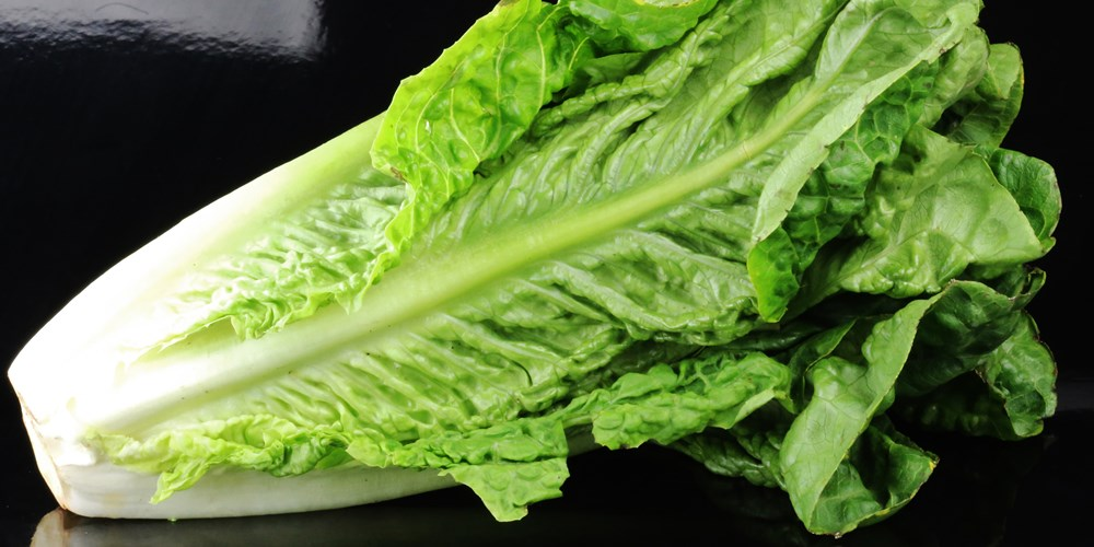 National E. coli Outbreak Is Worsening, a Blanket Ban On Romaine Lettuce Is Recommended