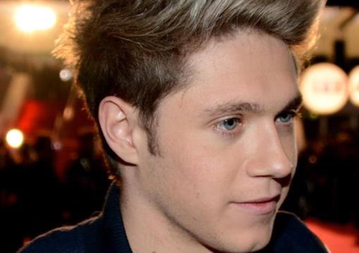 Niall Horan Praises Dads Who Flew With Their Newborn & Gave Out Goody Bags