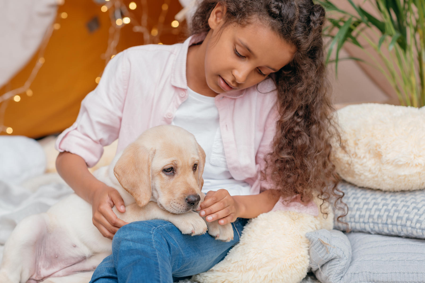 10 Tips for Bringing Your New Pet Home
