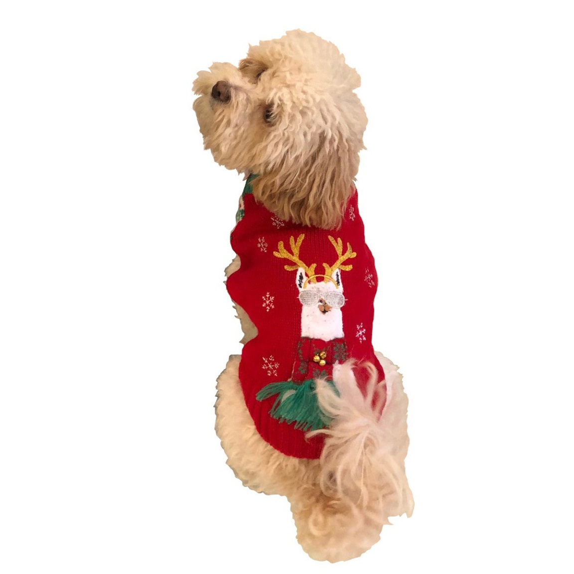 There Are Ugly Holiday Sweaters for Every Pet—Even Guinea Pigs