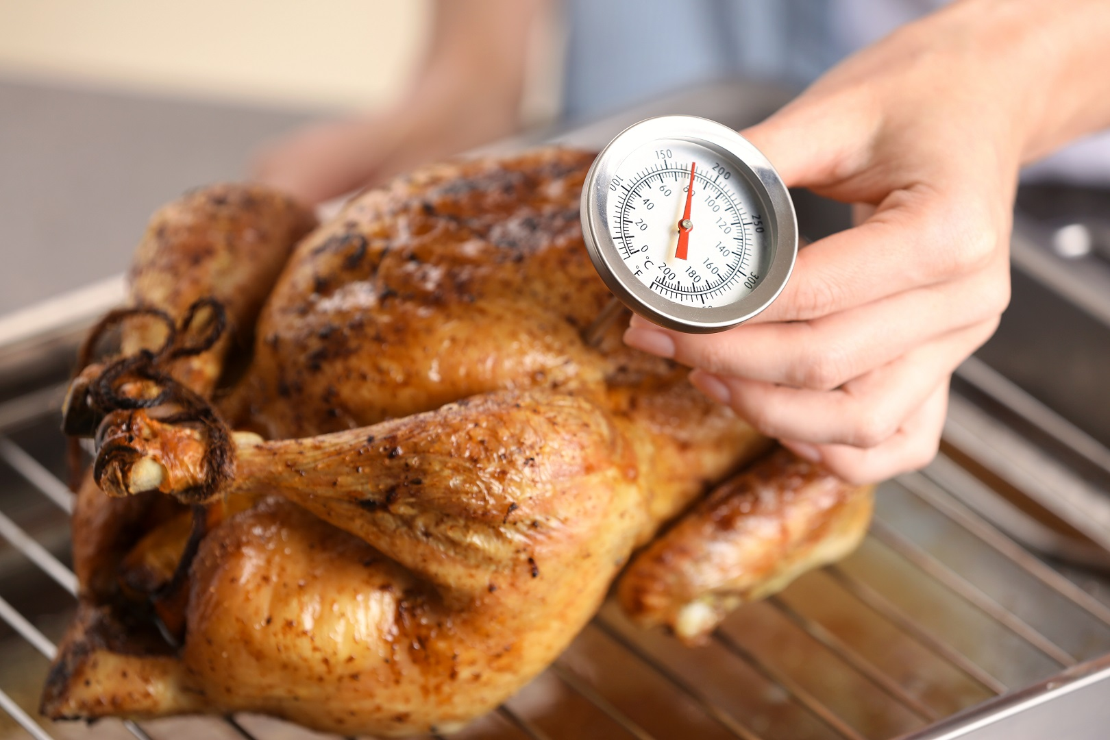 Food Safety Temperatures: Your Holiday Cooking Cheat Sheet
