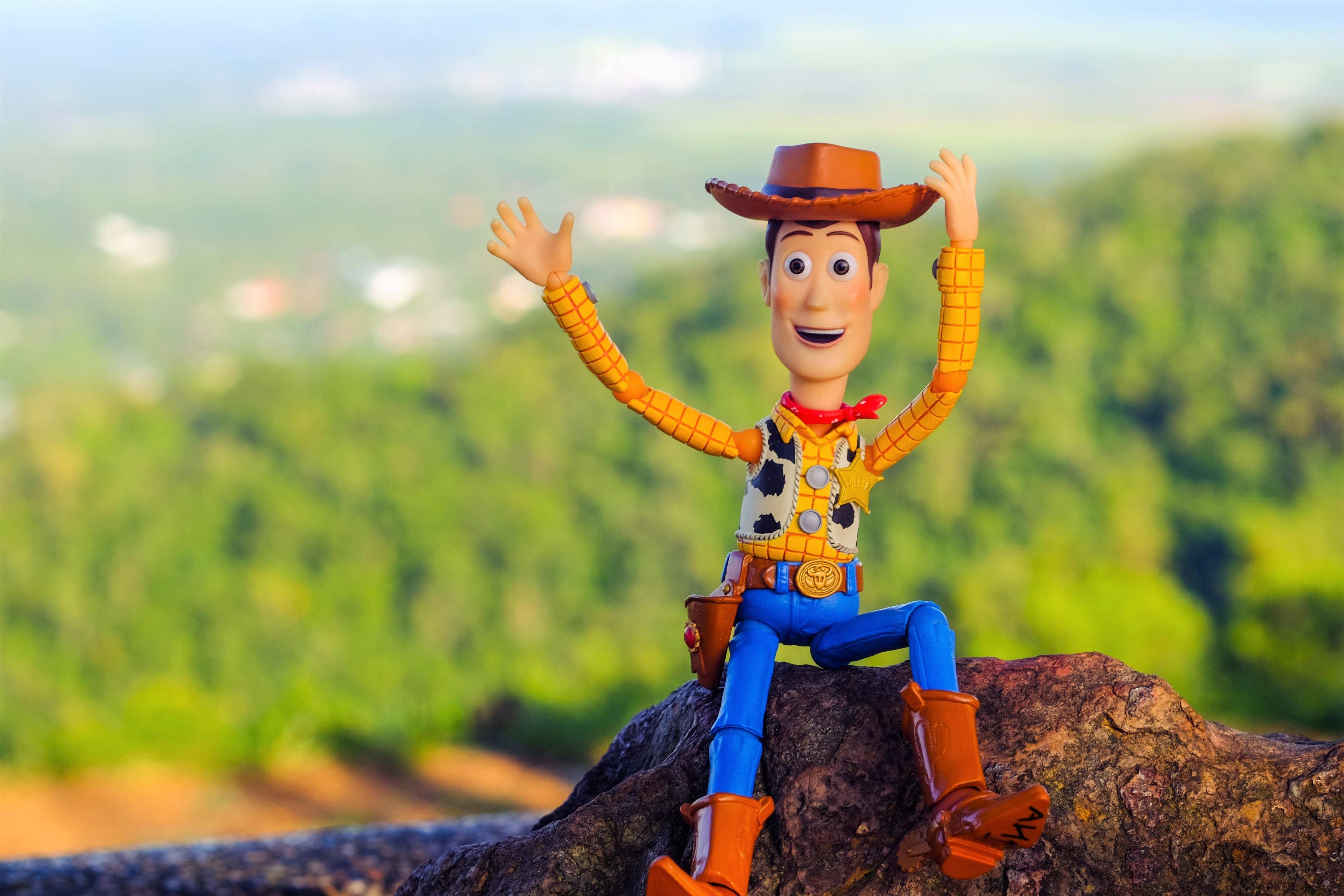 Toy Story Woody Cowboy Sitting on Rock Arms Up