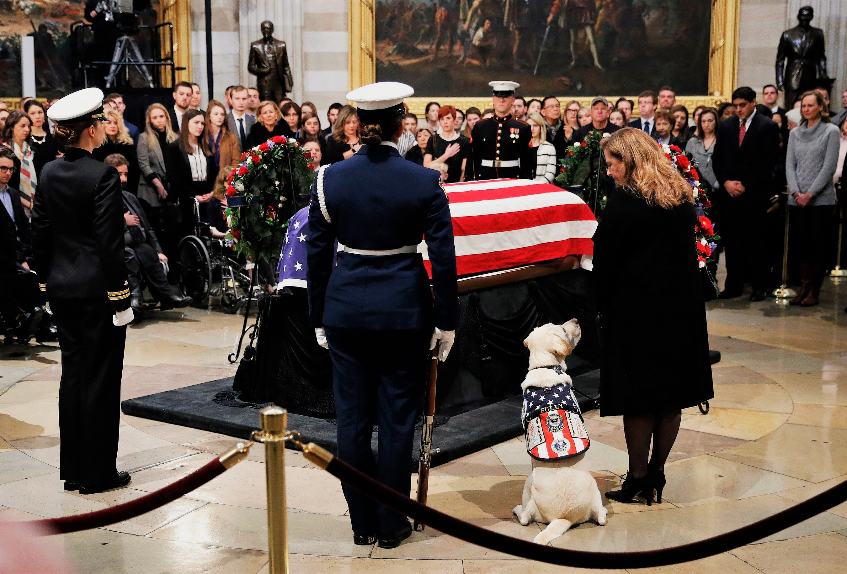 Sully the service dog sits next to George H. W. Bush's casket
