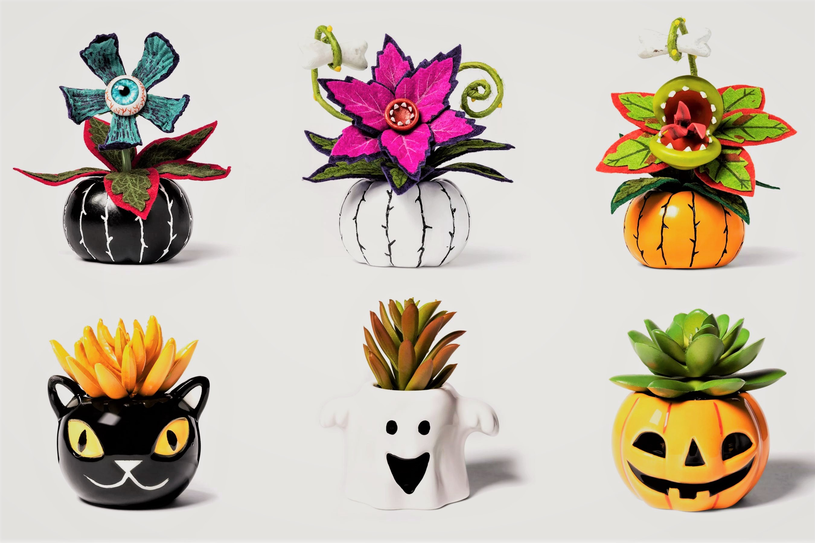 Target's New Line of Halloween-Inspired Succulents Is as Cute as It Is Creepy