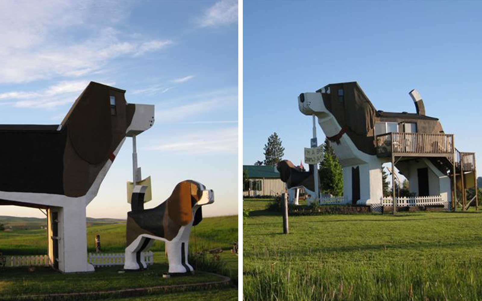 This Airbnb Shaped Like a Giant Beagle Is Every Dog Lover's Dream Vacation Home