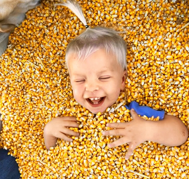 child laughing in corn pit
