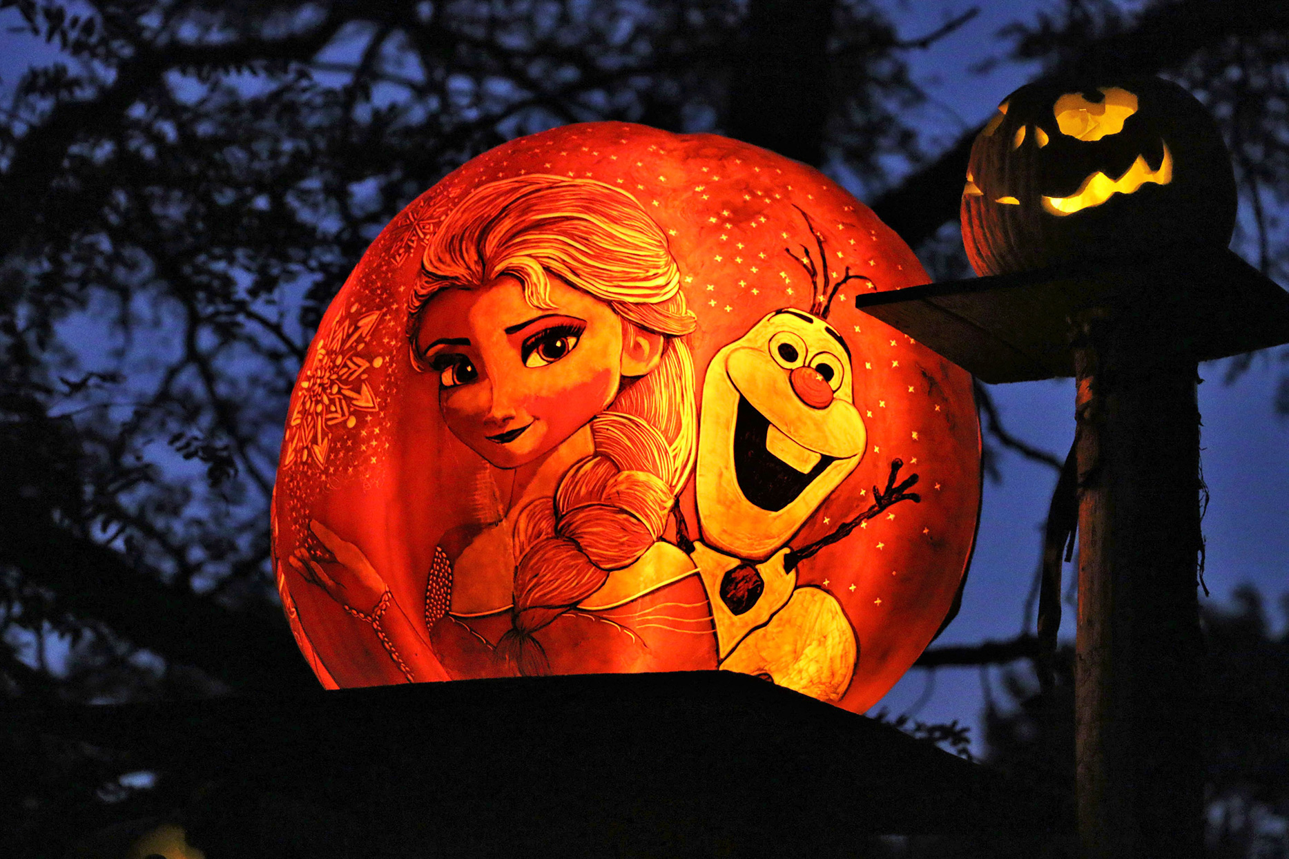 jack o lantern decorated with frozen characters