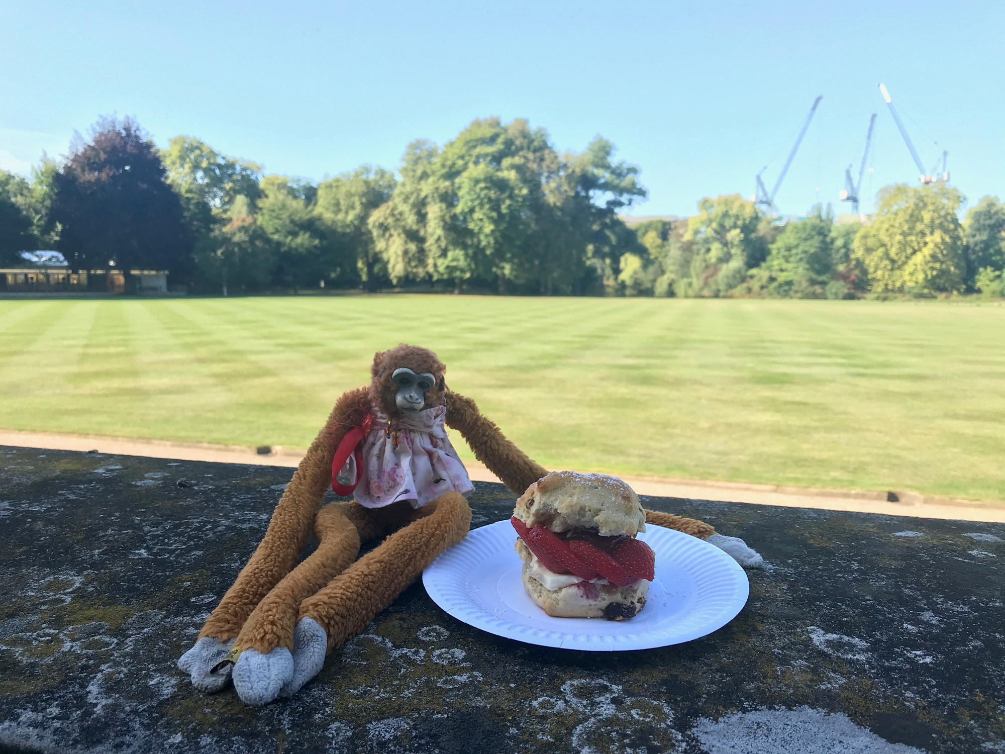 Harriet the Monkey Toy from Adelaide Hills kindergarden lost in Buckingham Palace 2