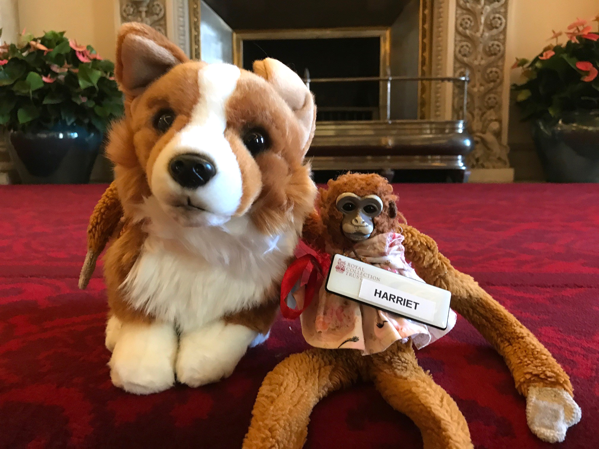 Missing Toy Monkey Found at Buckingham Palace and Returned to Schoolgirl After Letter to Queen