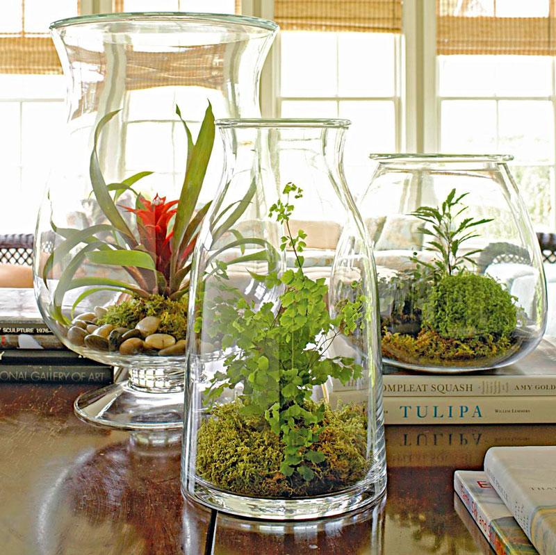 Continue for more container garden ideas