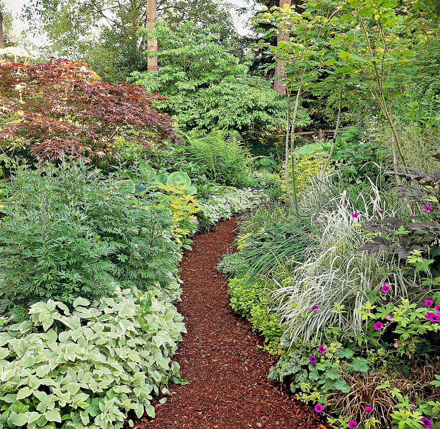 Wood mulch: easy and natural