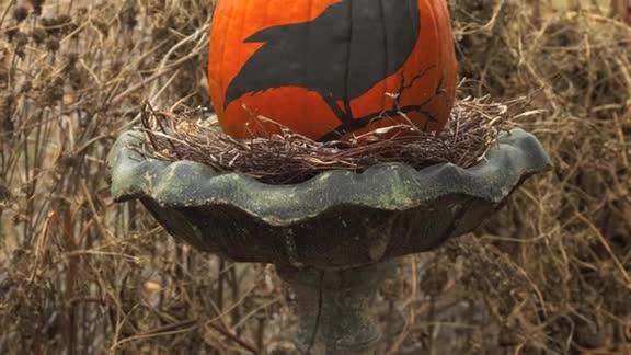 One-Minute Inspiration: No-Carve Pumpkins