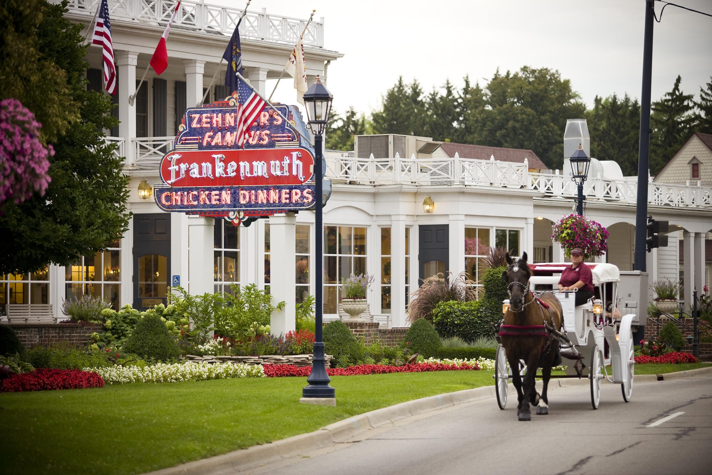 Horse and buggy outside Zehnder's