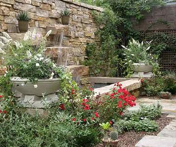 Visit public rose gardens