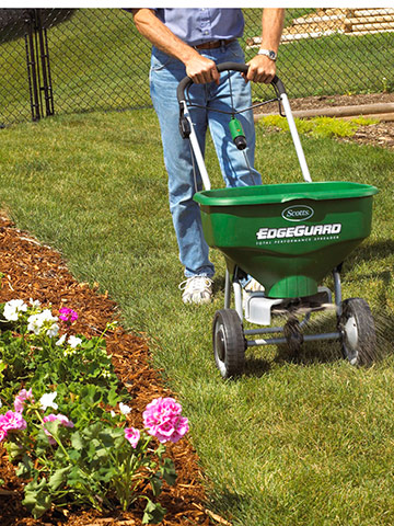 Lawns: Time to feed