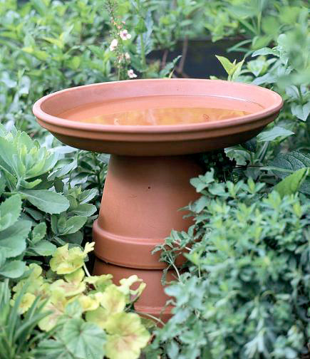 Birdbath in a flash