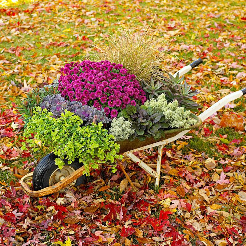 Fall garden container
