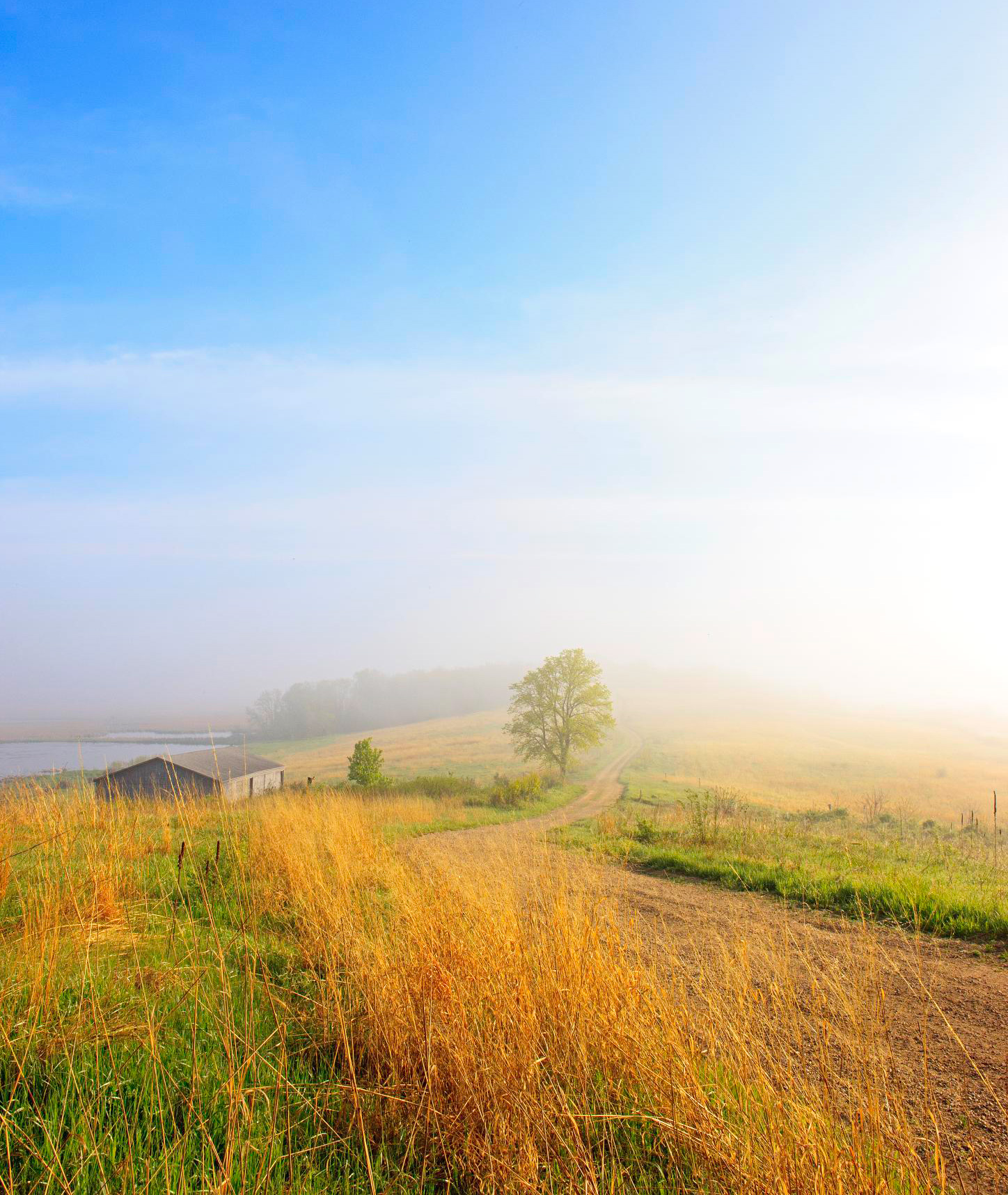 Experience misty mornings