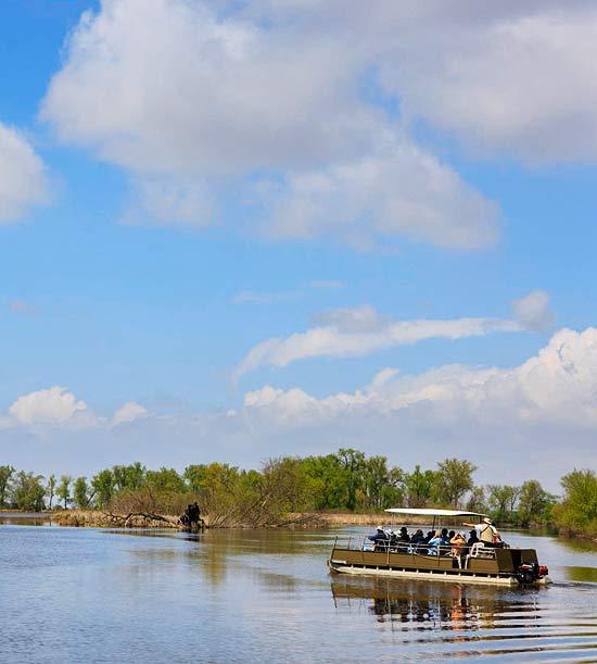 Trip guide: Horicon Marsh