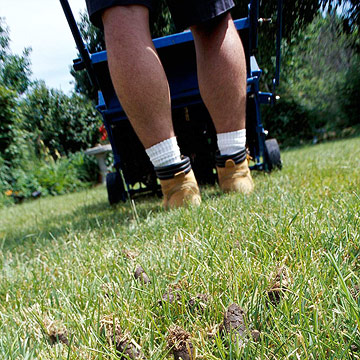 Lawns: Wake up turf with fertilizer and care