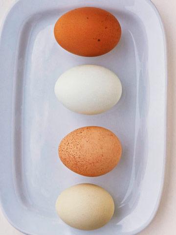 Egg tips
