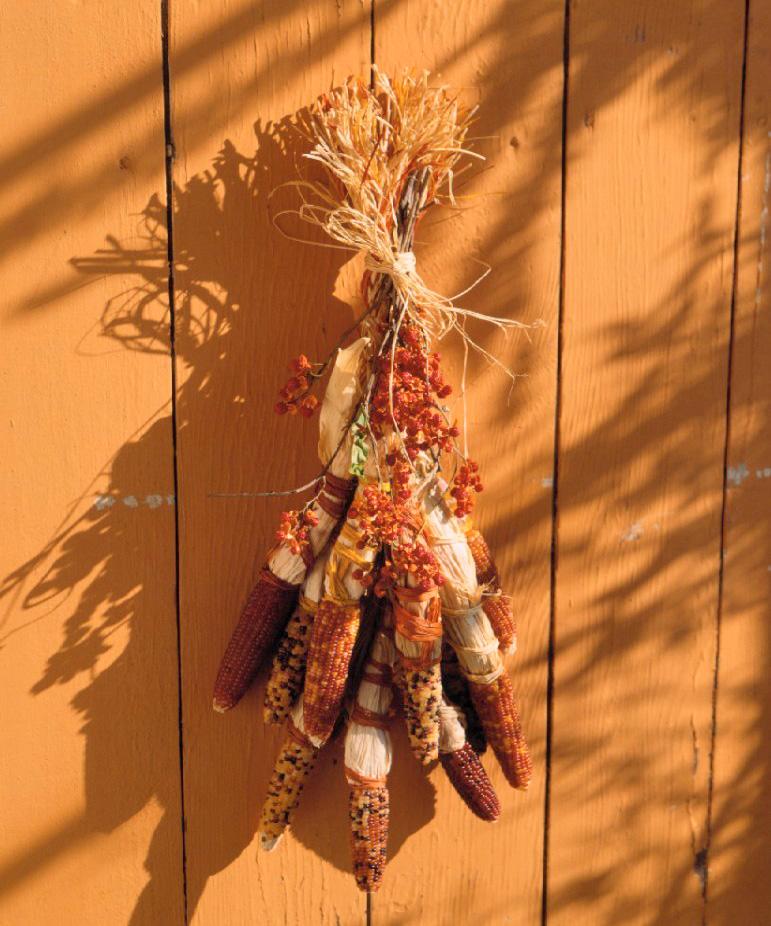 Ornamental corn braid