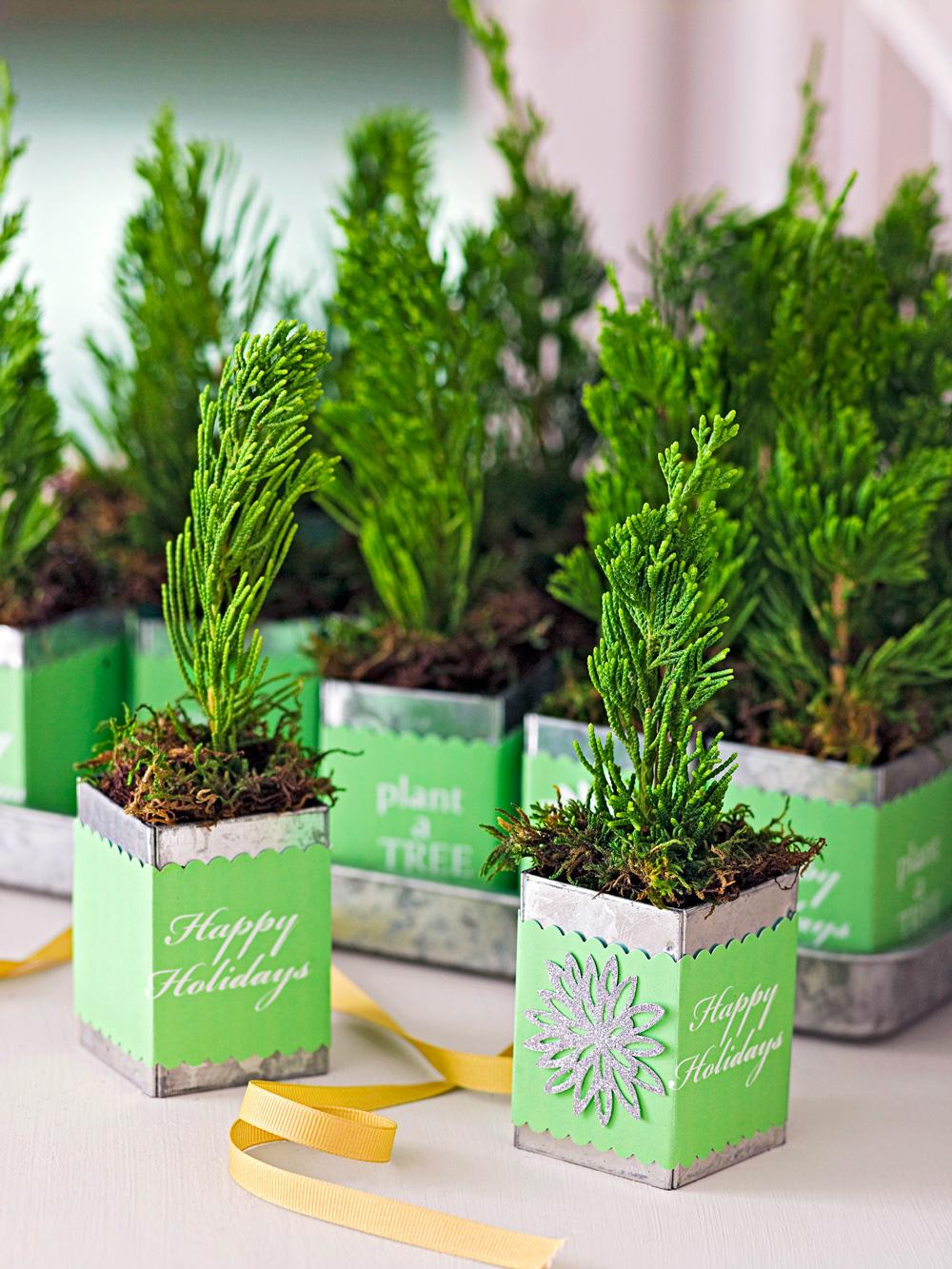 Gift trees