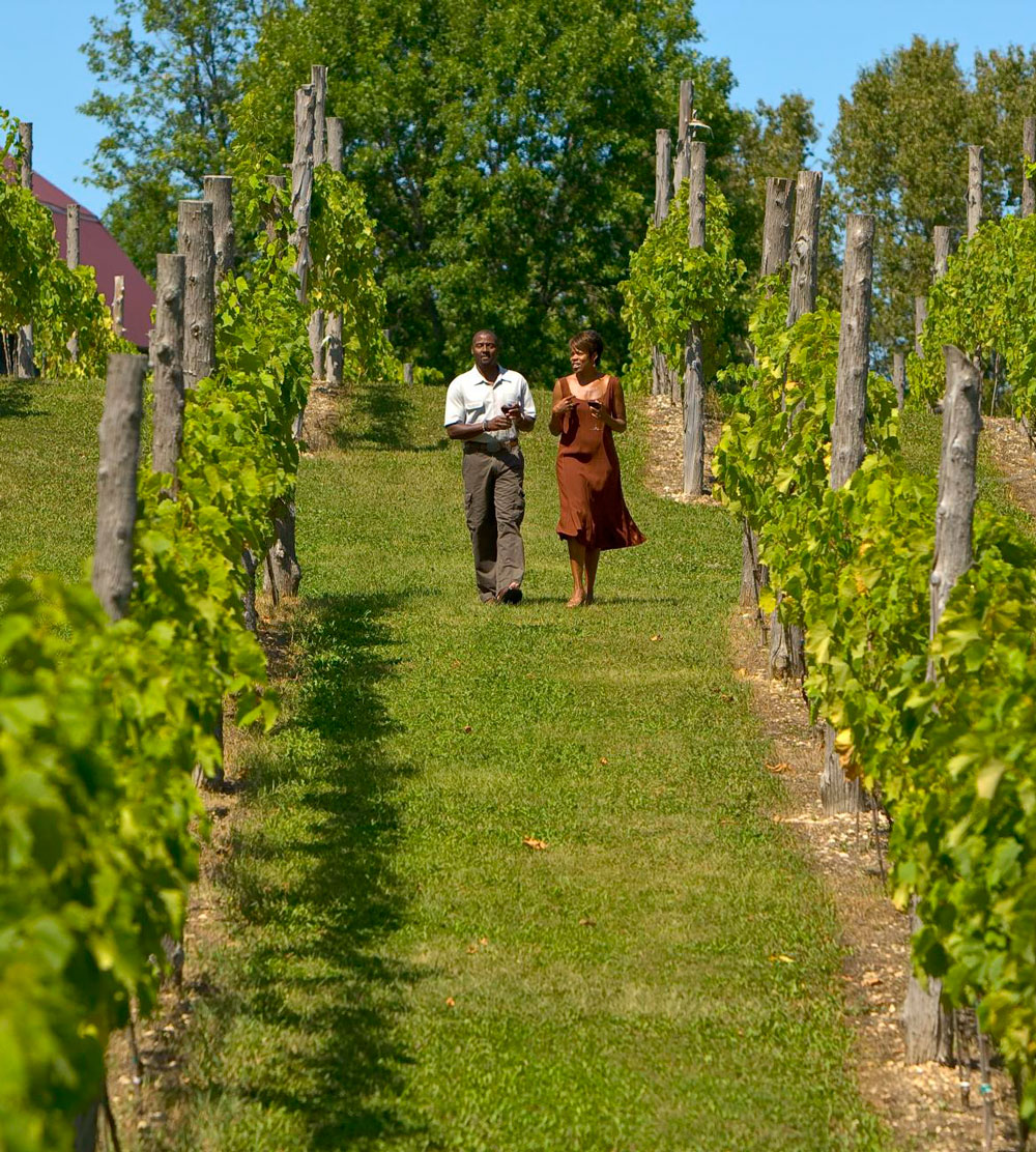 Door County wineries