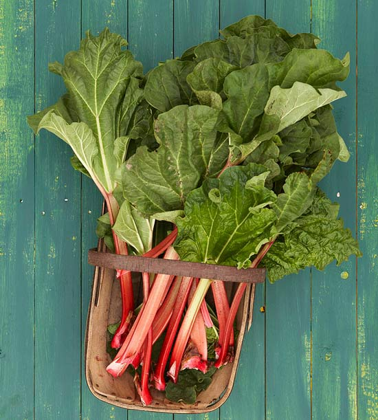 More rhubarb recipes