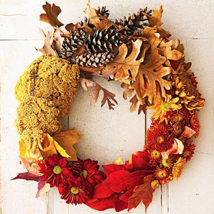 Celebrate fall colors