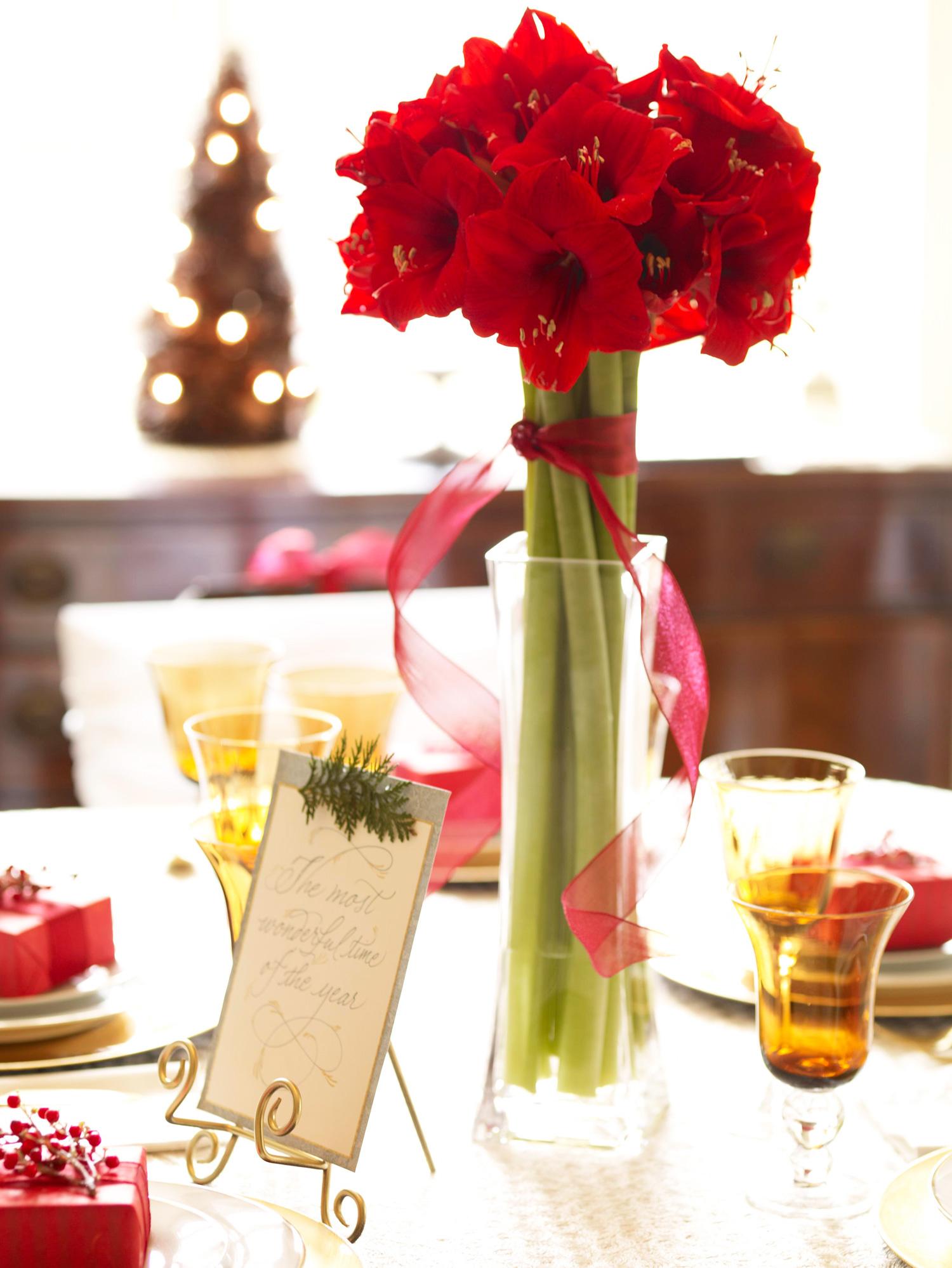 Christmas centerpiece ideas: amaryllis