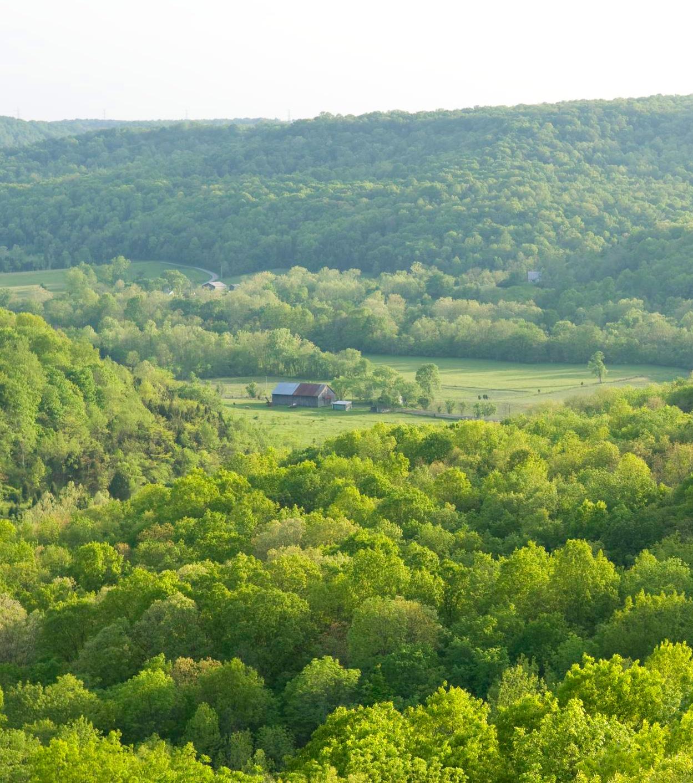 The edge of Appalachia