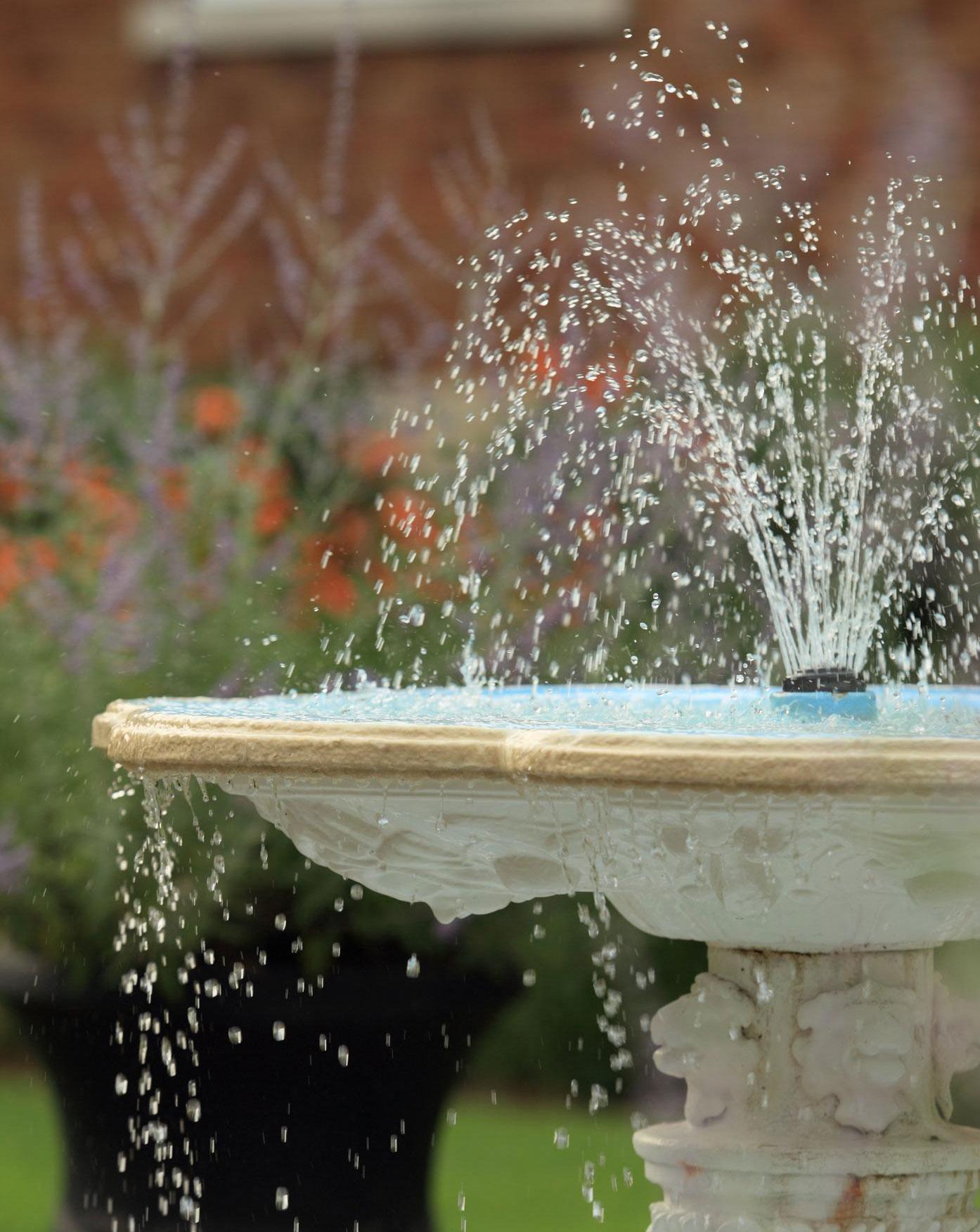 Fresh fountain