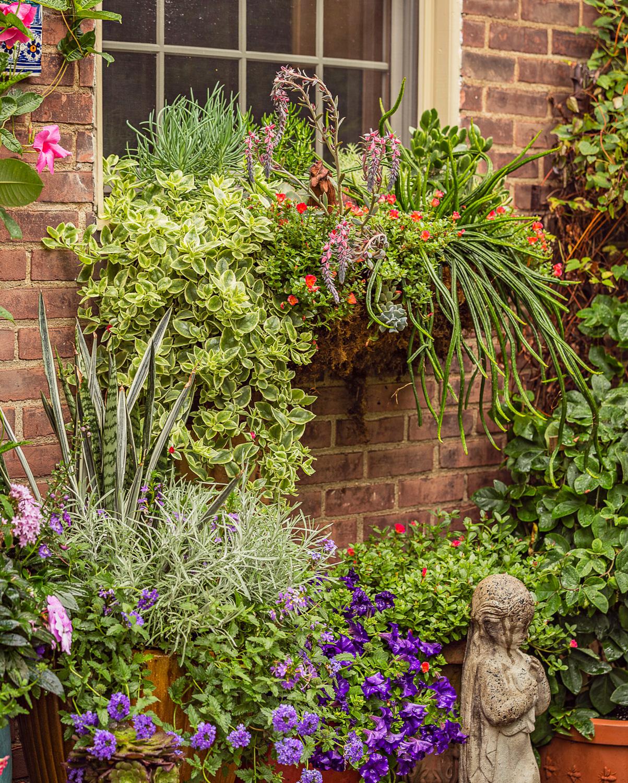 Kitchen window container garden grouping