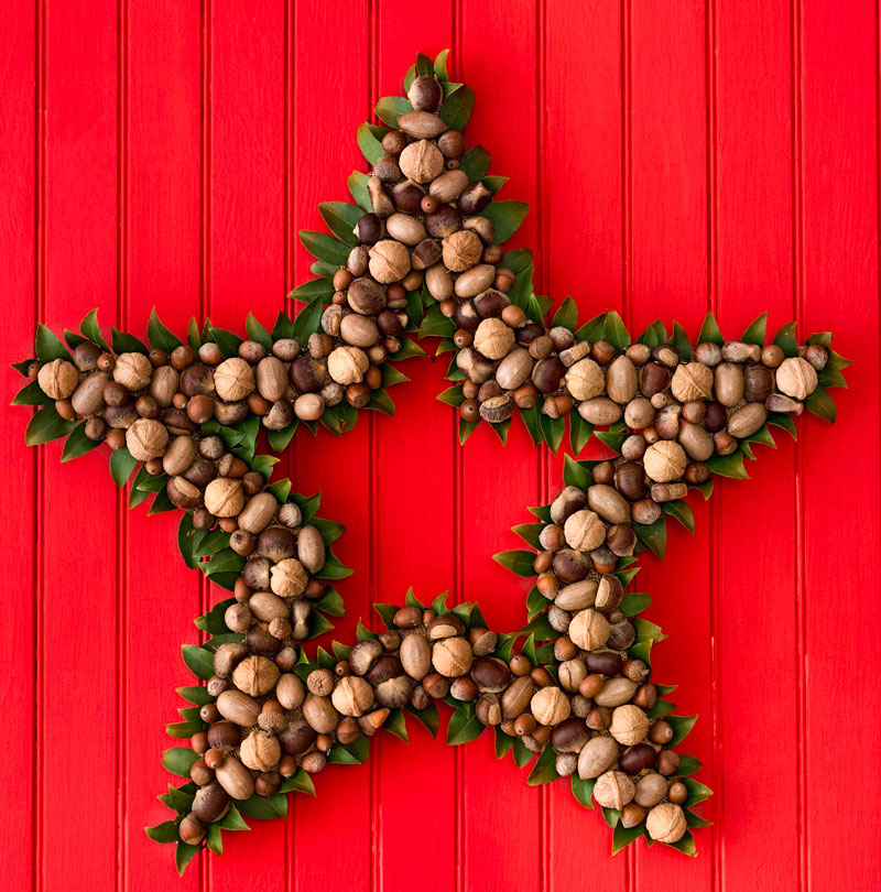 Nut and star wreath