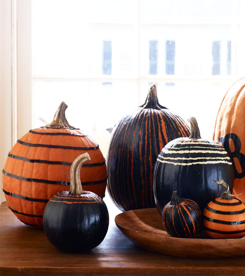 Black-and-orange beauties