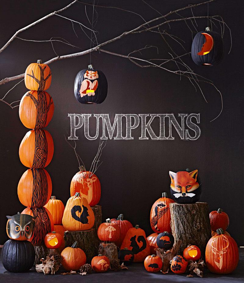 Woodland pumpkins