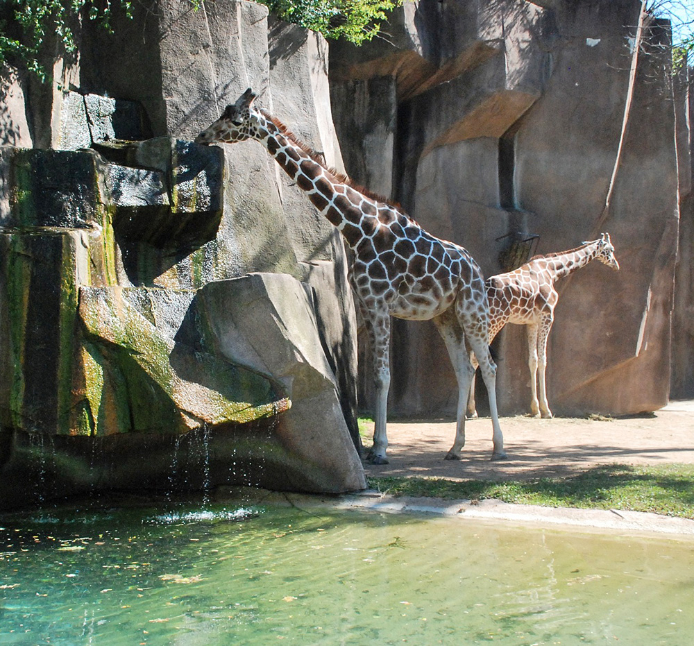 Milwaukee County Zoo. Photo courtesy of Visit Milwaukee.