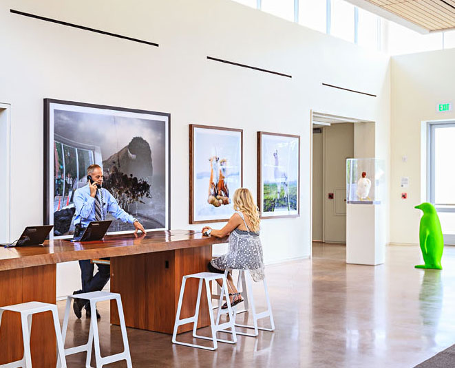 Contemporary art (including numerous giant penguins) stars in the 21c Museum Hotel lobby.