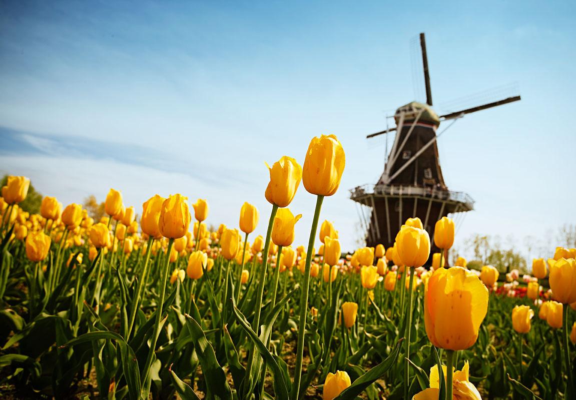 Windmill Island Gardens.