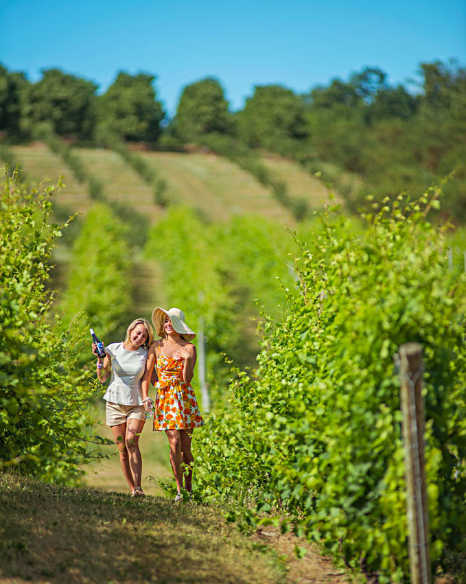 Blustone Vineyards on the Leelanau Peninsula in Michigan