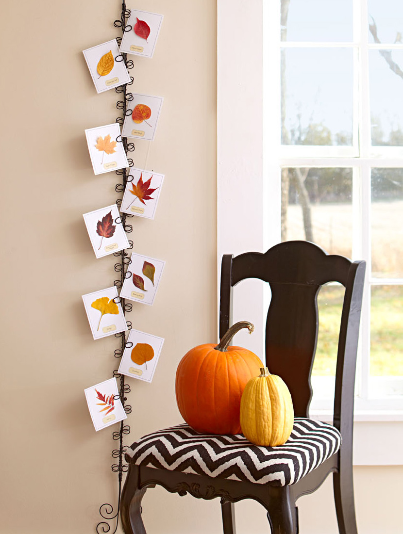 Fall decorating display. Chair and pumpkins.